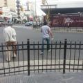peatones ovilam