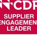 Supplier engagement leader 2018 1